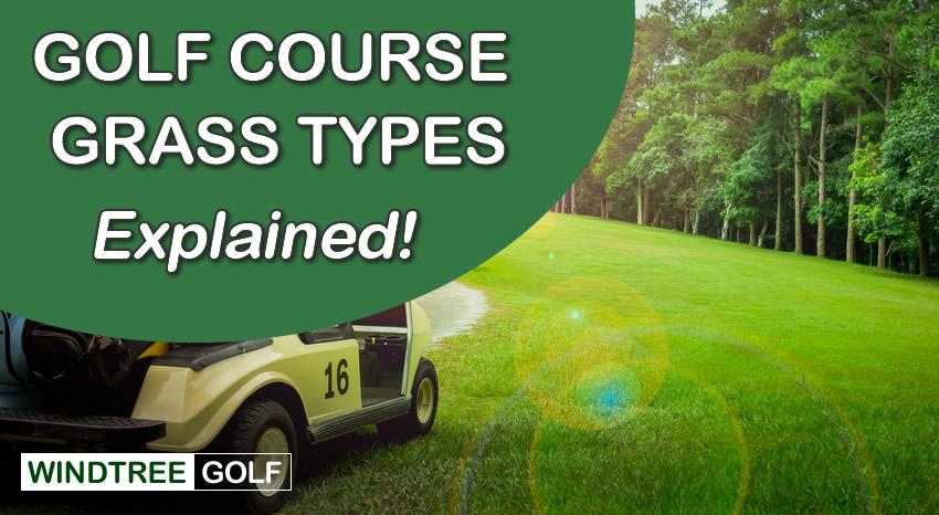 golf course grass types