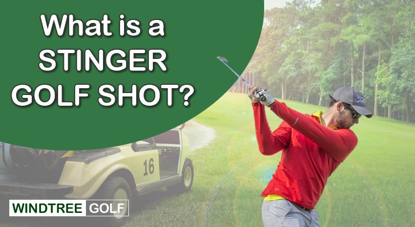 stinger shot golf